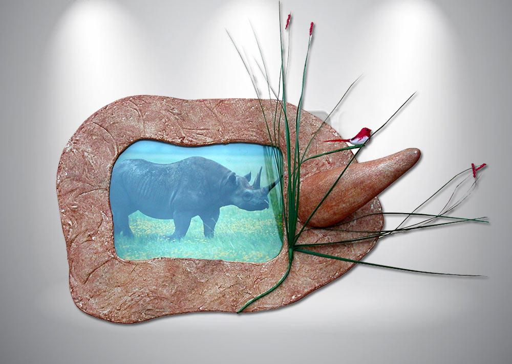 encadrement-photo-rhinoceros